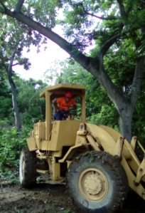 Bulldozer for houselooting (loteo) in forest area of Henne Well.